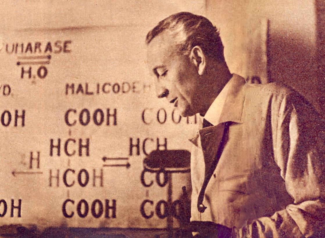 Albert Szent-Györgyi discoverer of Vitamin-C