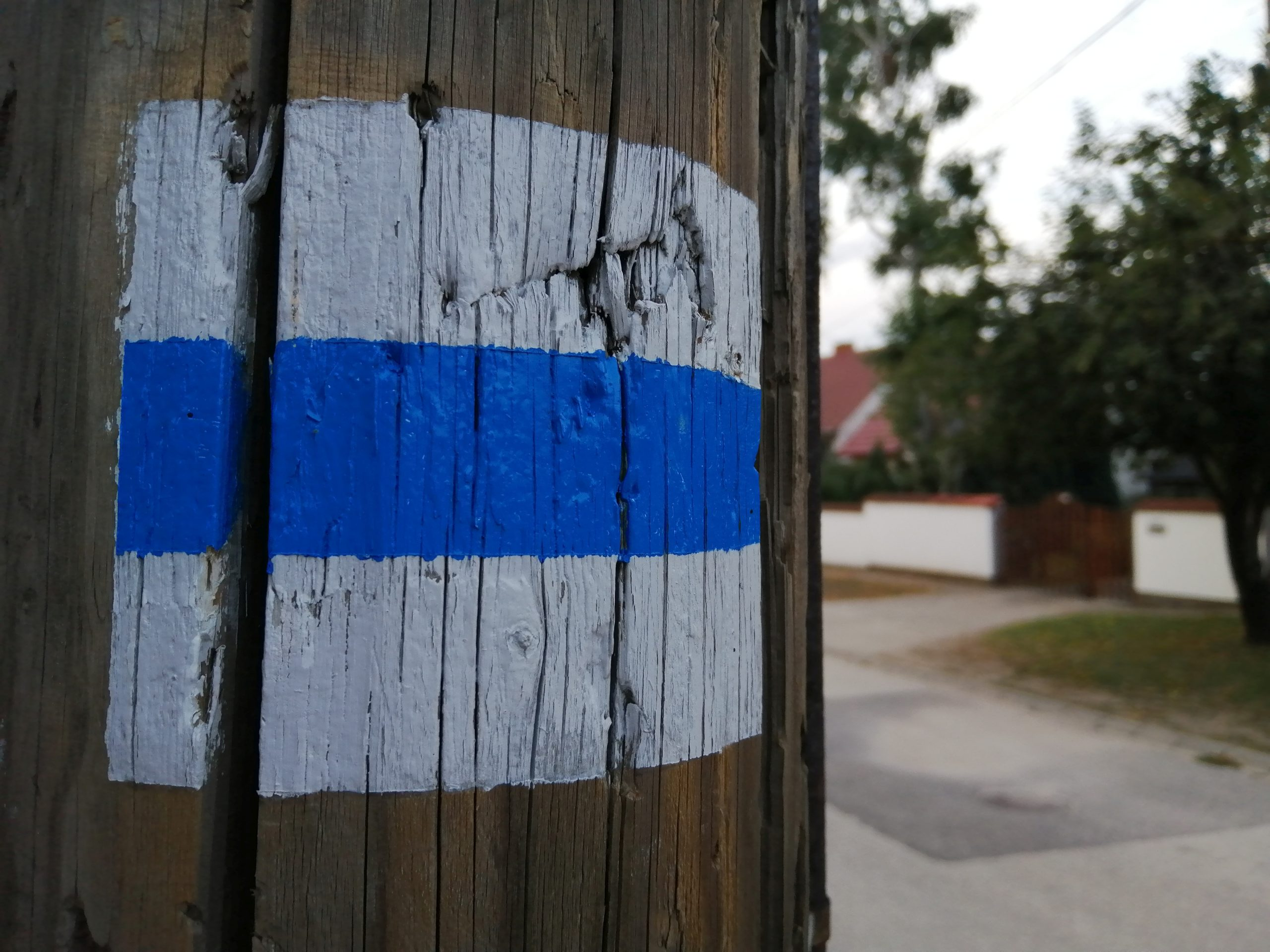 Blue Trail sign in front of our house