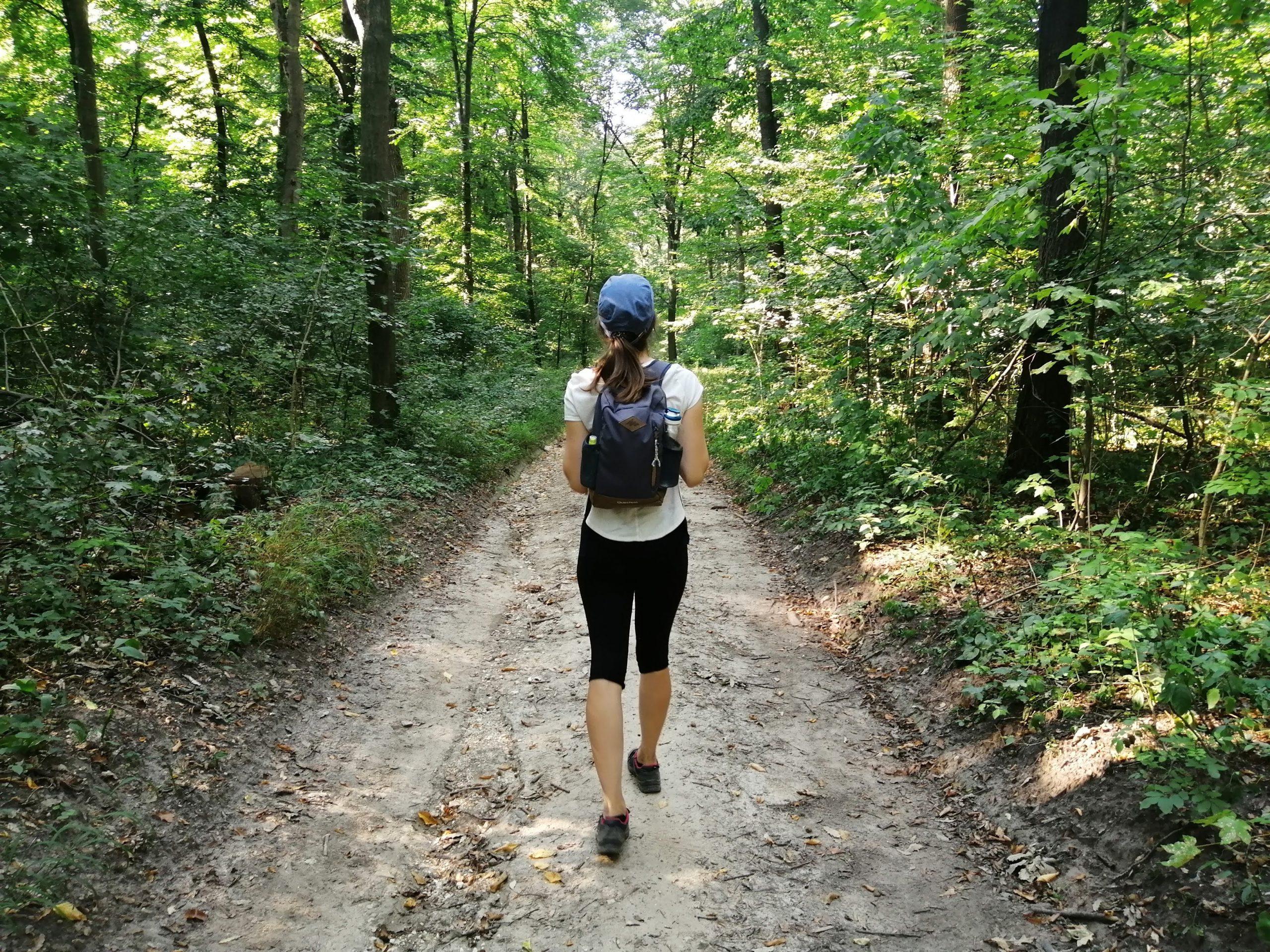 Trekking along the trail